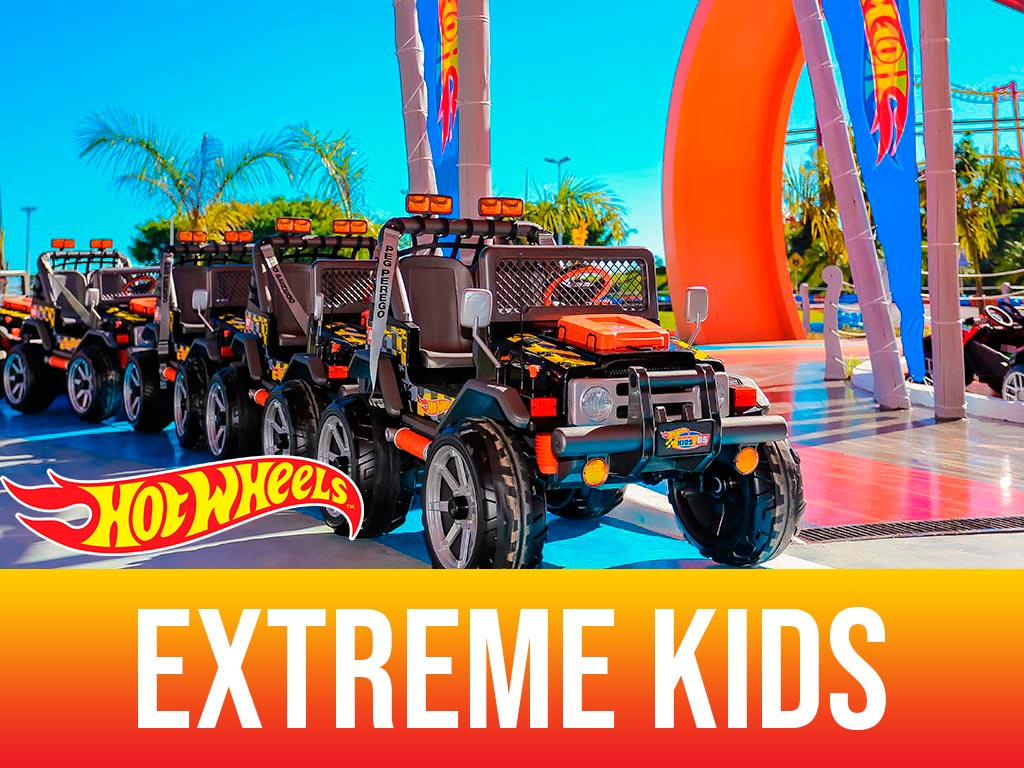Hot Wheels Extreme Kids Jipes Elétricos - 01 ingresso